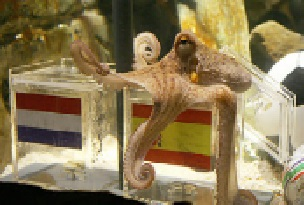 Paul the Octopus is a famous psychic animal that supposedly predicted the outcomes of football matches with great accuracy.